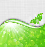 Eco friendly background with leaves