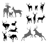 Deer stag fawn and doe silhouettes