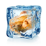 Roasted chicken in ice cube