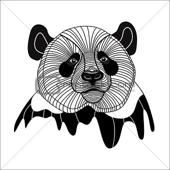 Bear panda head animal symbol for mascot or emblem design, vector illustration for t-shirt.