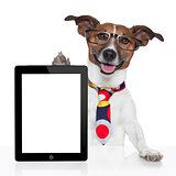 business dog tablet pc ebook
