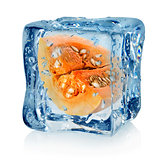 Pumpkin in ice cube
