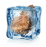 Roasted meat in ice cube