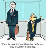 HR and Low performers