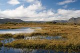 Marsh Land on Gimsoya, Lofoten Islands, Norway, Scandinavia