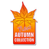 new autumn collection label with leaf