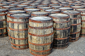 Stacked whisky casks and barrels
