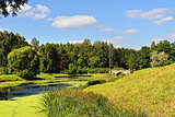 Summer landscape of the Pavlovsk garden. Visconti Bridge