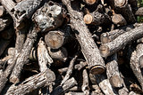 Pile of dry firewood