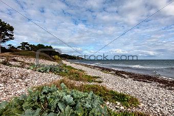 A sunny day on the beach on Mols, Denmark