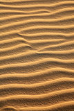 sand dune of cumbuco