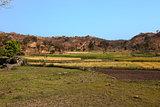 countryside in rajasthan
