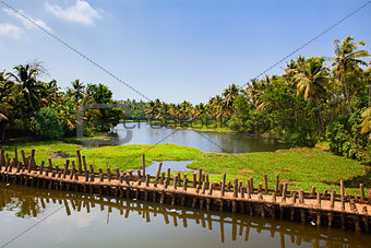 backwaters of cochin