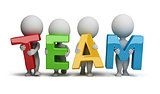 3d small people - team