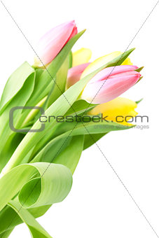 Beautiful pink and yellow tulip bouqet