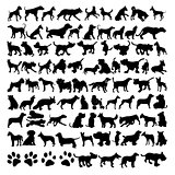 Vector silhouettes of dogs