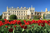 Tulips in front of the Lednice Castle