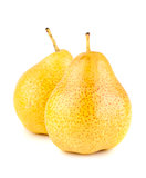 Two yellow ripe pears