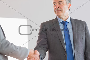 Serious businessman shaking a hand