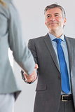 Joyful businessman shaking a hand