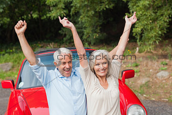 Cheerful mature couple posing by their red convertible