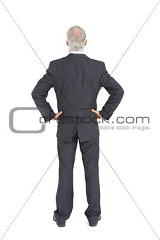 Rear view of serious mature businessman posing