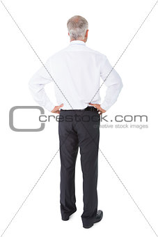 Businessman standing back to camera hands on hips