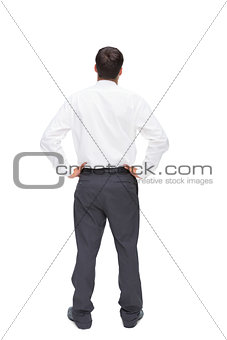 Rear view of classy young businessman posing