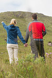 Couple holding hands with woman pointing to mountain