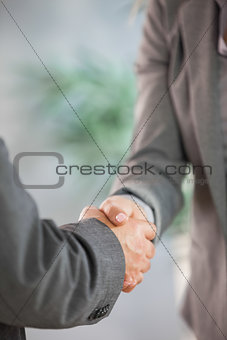 Business team shaking hands close up