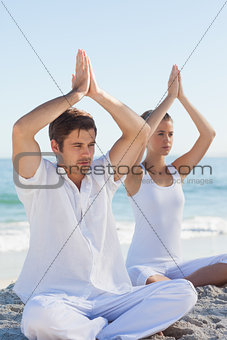 Concentrated woman and man practicing yoga