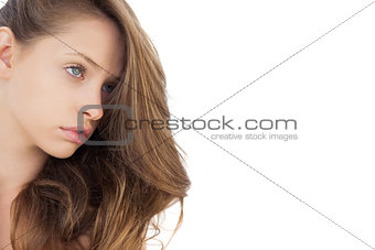 Charming brunette model posing looking away