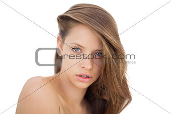 Attentive brunette model posing looking at camera