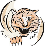 round sketch of tiger head