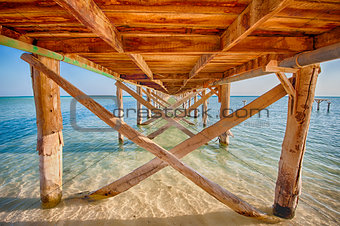 Underside of a wooden jetty in tropical sea