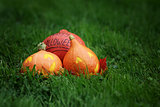 three Halloween pumpkins on green grass