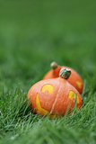 two Halloween pumpkins walking on grass