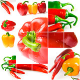 Bright ripe vegetables on white background