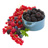 bowl of blackberry with other  berries