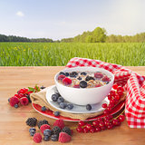 The oat flakes  porridge with milk and berries