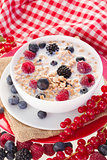 Plate with  oat flakes with milk and berries