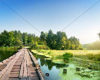 Bridge over a swampy river