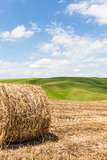 Tuscany agriculture