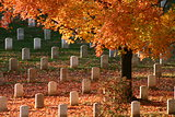 Fall at Arlington National Cemetery