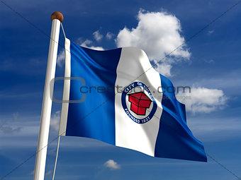 Toledo City Flag