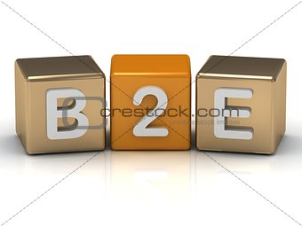 B2E Business to Employee symbol on gold and orange cubes