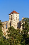 Castle tower in Tenczynek, Poland