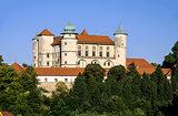 Castle in Wisnicz, Poland
