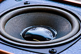 Speaker loudspeaker