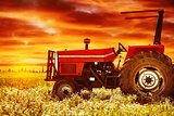 Big tractor on sunset